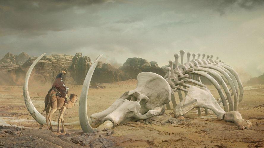 desert skeleton camel art Bedouin daniel romanovsky wallpaper