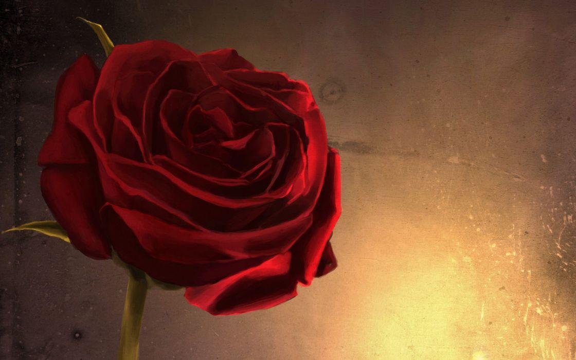 glow rose fire art flower wall close-up red wallpaper