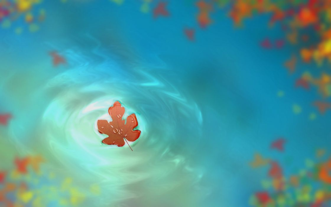 leaf art drops drawing water autumn wallpaper