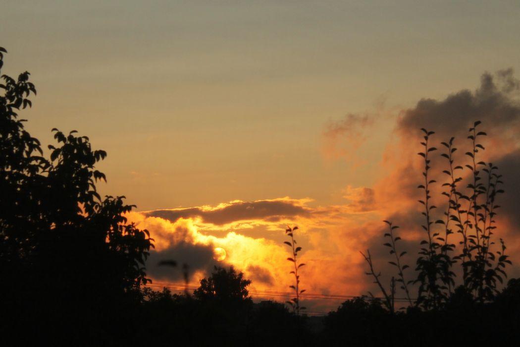 sunset evening sky clouds summer trees sun wallpaper