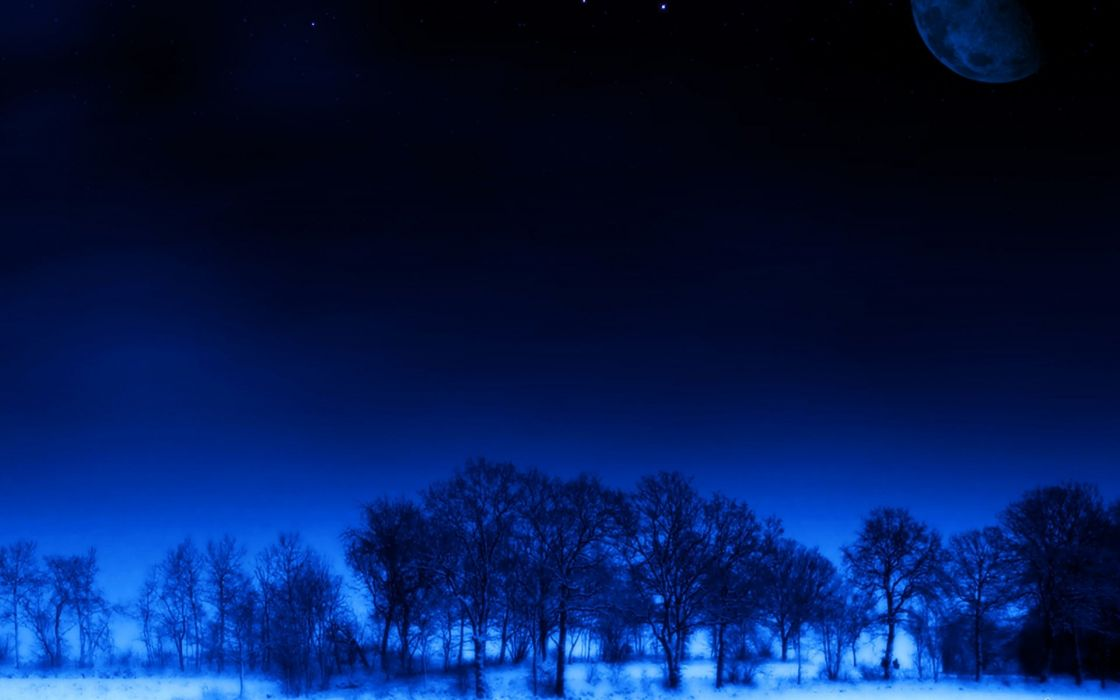 night moon trees stars dream blue beauty wallpaper