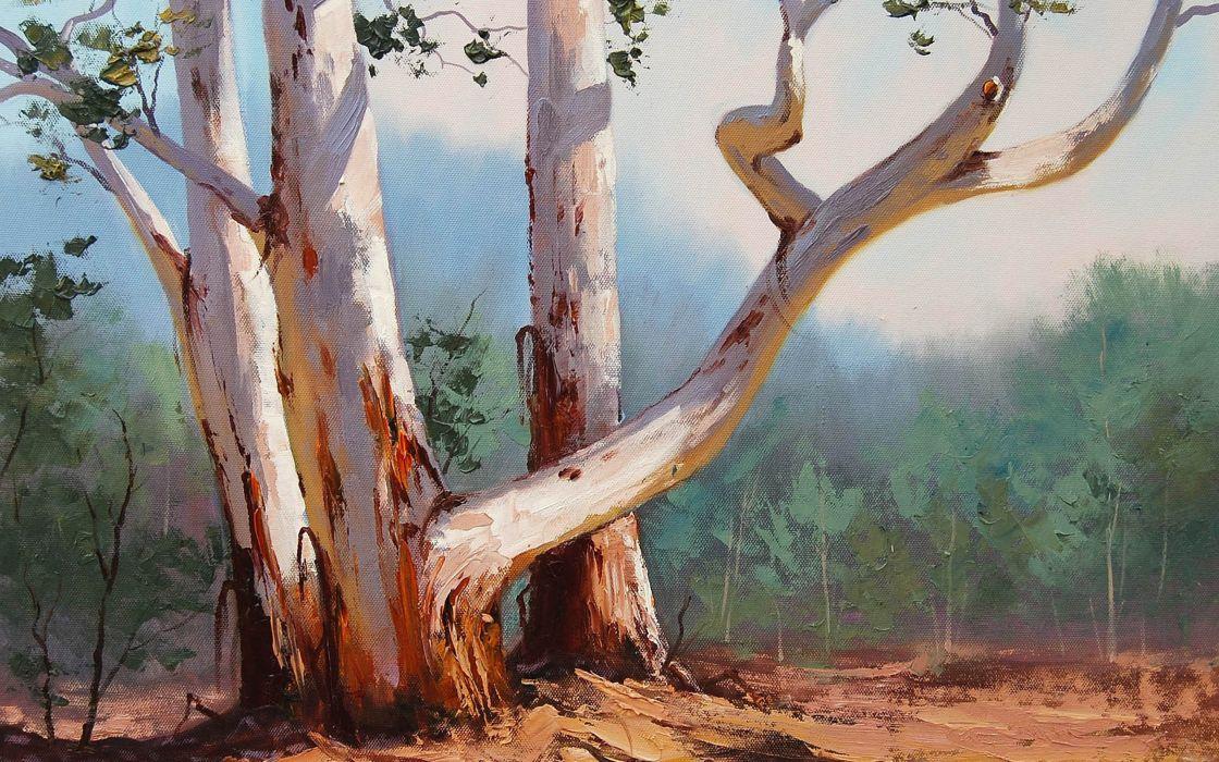 nature art barrel artsaus curves forest trees wallpaper