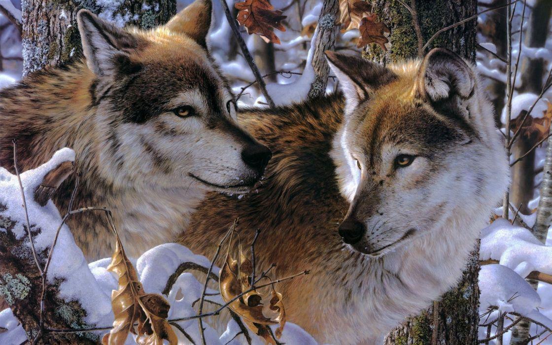 wolves snow jay kemp art wallpaper