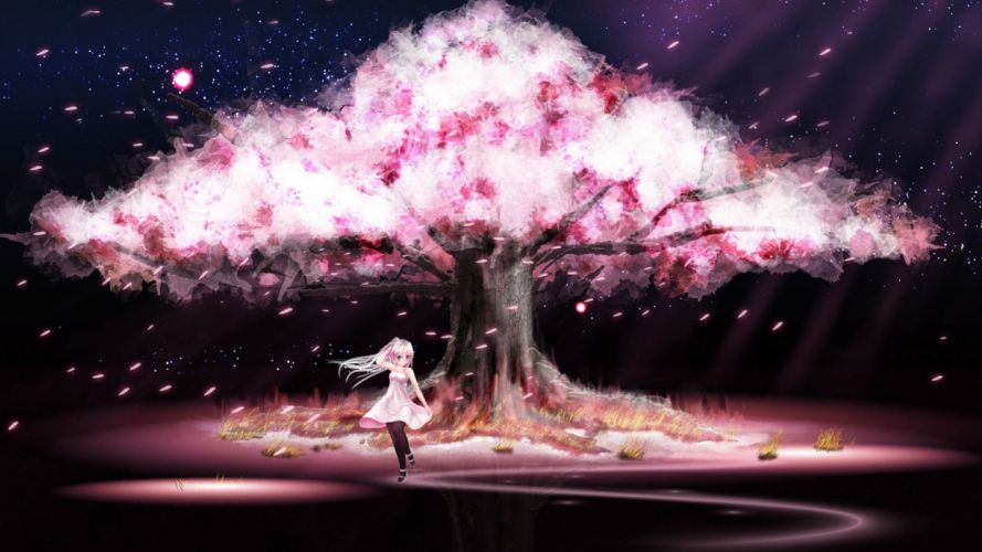 girl Anime Scenery Cherry Blossoms dress cute wallpaper