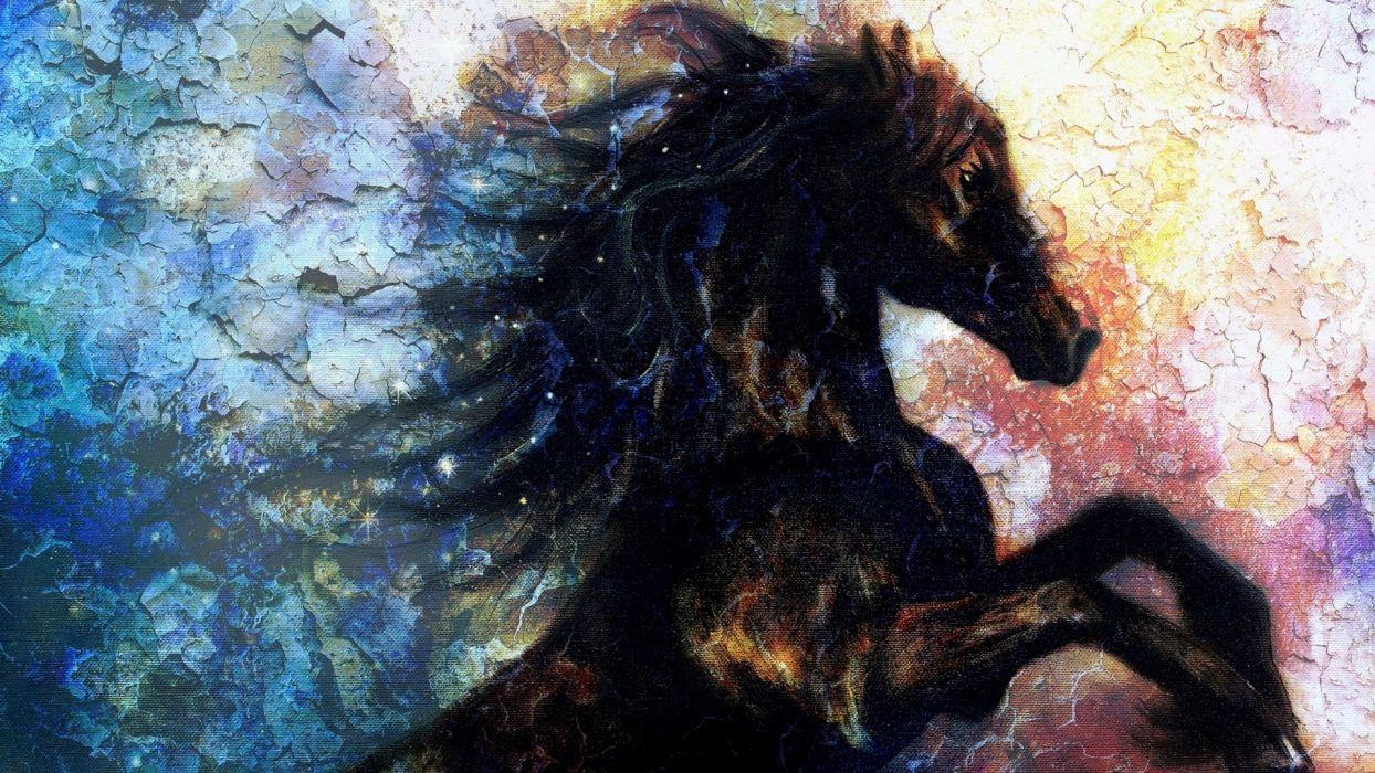 art oil painting drawing Pretty Black Horse Wall Art wallpaper