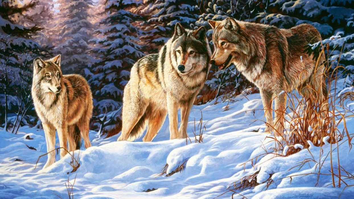 art oil painting drawing Winter Wood Wolves Small Talk wallpaper