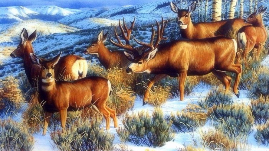 art oil painting drawing Nice Winter Forest Pretty Deer wallpaper