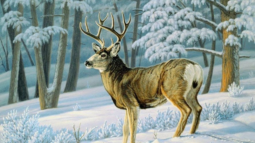 art oil painting drawing Winter Forest Cute Deer Slope wallpaper