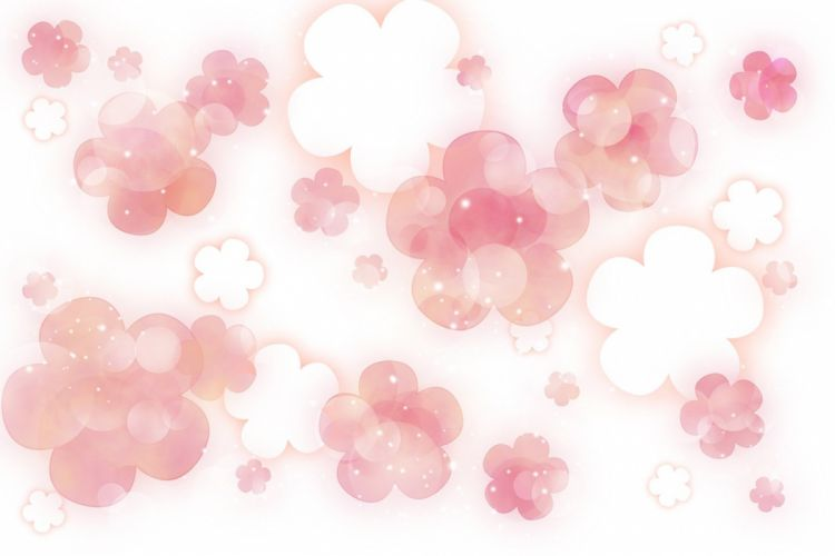 cherry blossom texture wallpaper