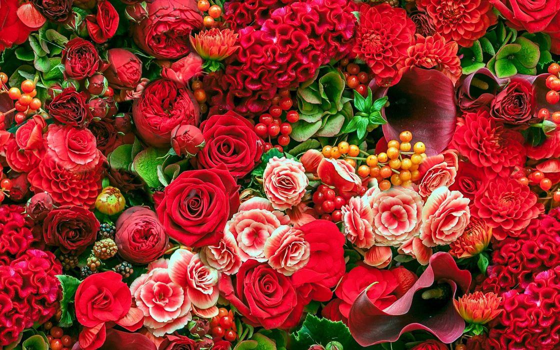 flower red texture  wallpaper