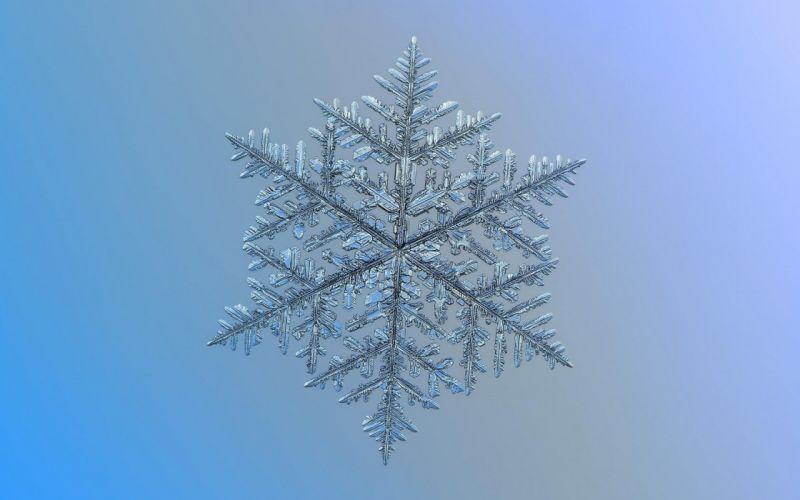 winter snowflake texture wallpaper