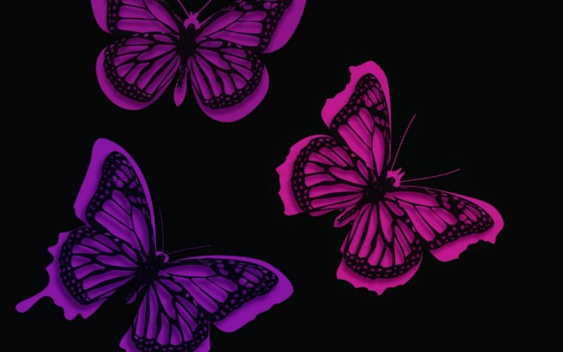 butterfly texture wallpaper