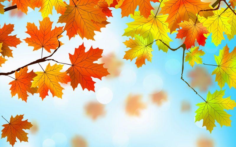 Textures Autumn leaves wallpaper