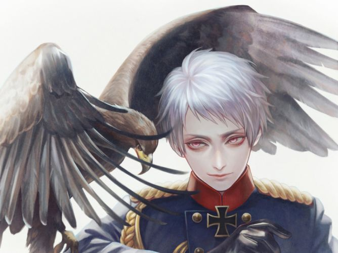 anime anime guy prussia eagle bird animal red eyes white hair uniform axis powers hetalia grin wallpaper
