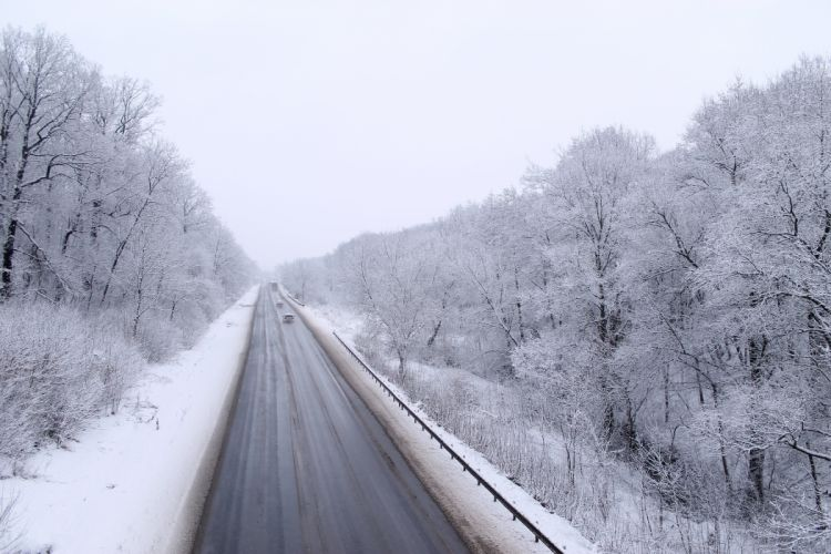 winter road cars path snow trees forest wallpaper