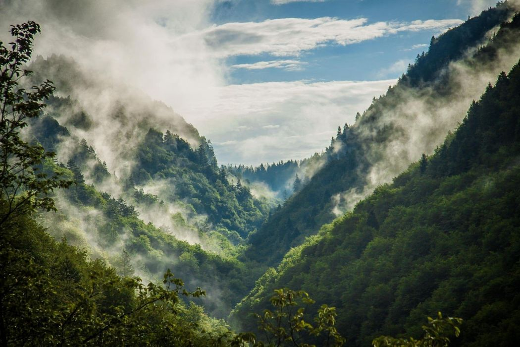 nature photography landscape mountains sunlight forest mist spring Bulgaria wallpaper