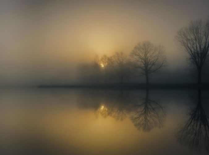 photography nature landscape morning mist trees reflection lake sunlight calm wallpaper