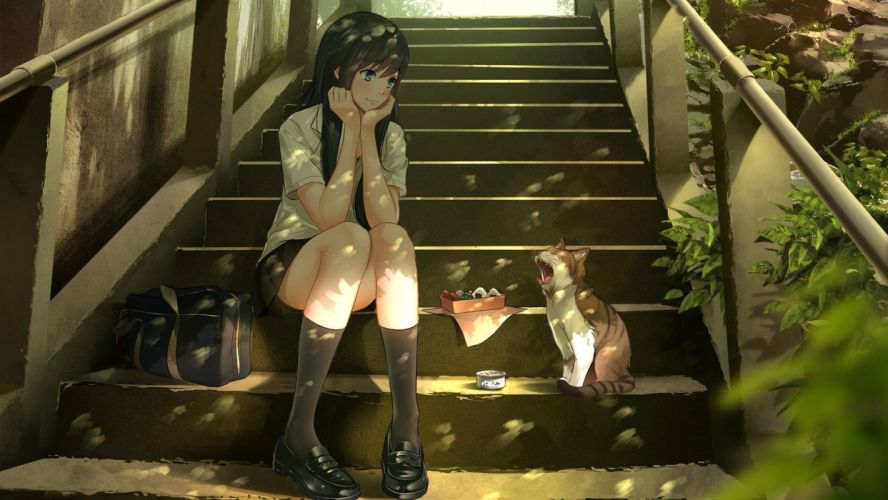 anime girls cat food stairs long hair wallpaper