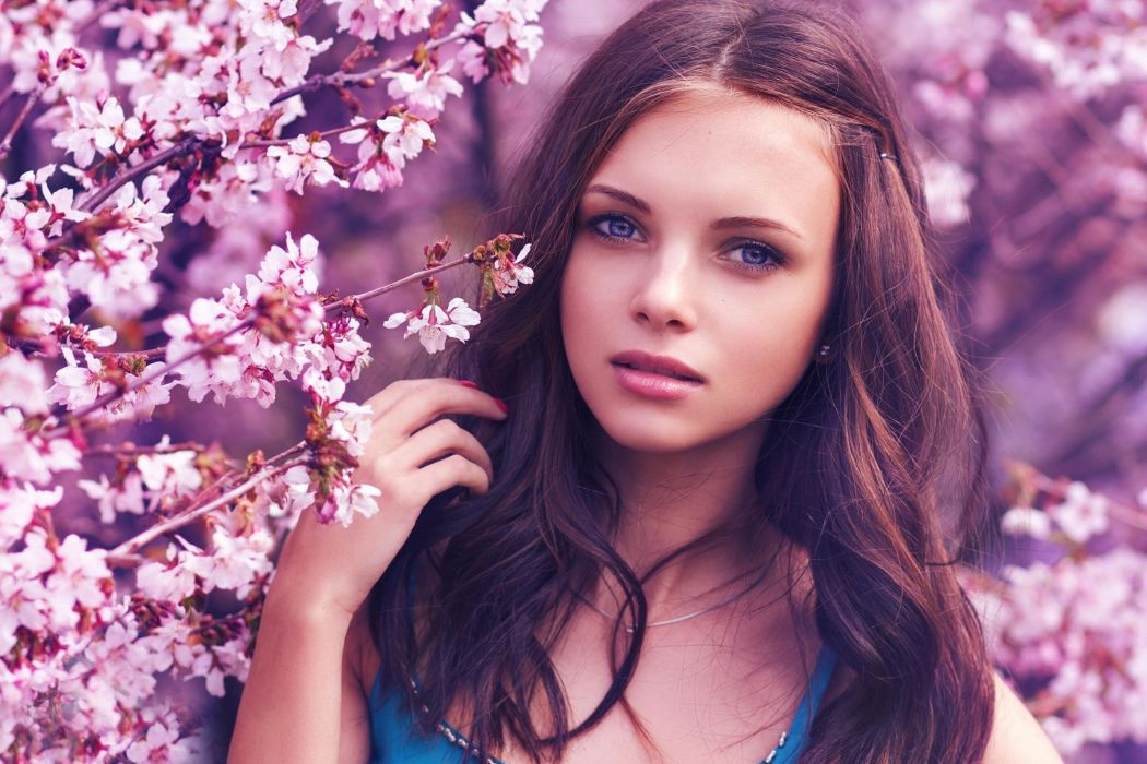 face model women brunette cherry blossom wallpaper