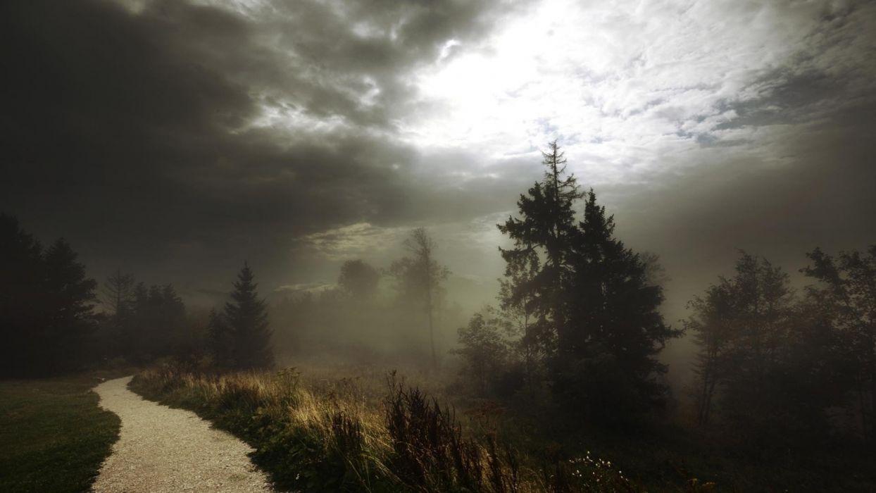 landscape road trees sky mist path wallpaper