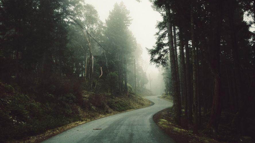 landscape road forest wallpaper