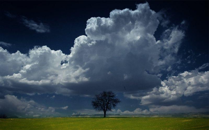 nature landscape trees sky clouds wallpaper