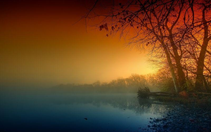 nature landscape trees sunset wallpaper