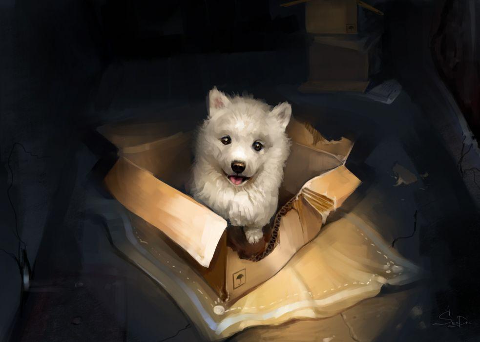 puppies boxes animals dog artwork wallpaper