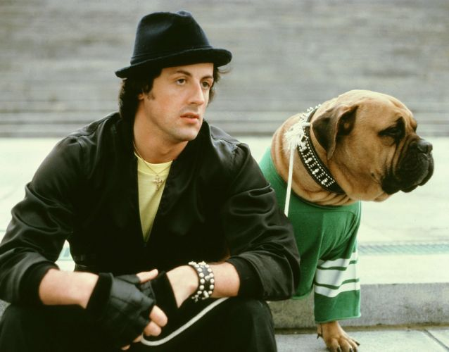 Sylvester Stallone Rocky Movies 145 (2) wallpaper