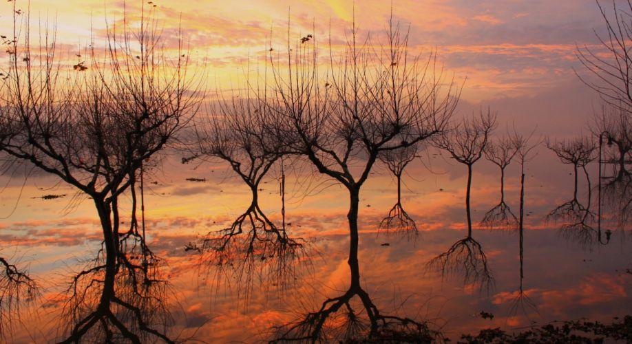 nature sky tree reflection lake wallpaper