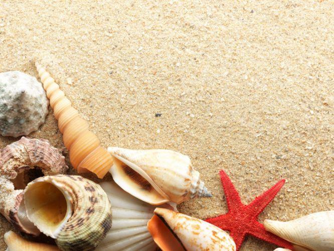 beach summer holiday wallpaper