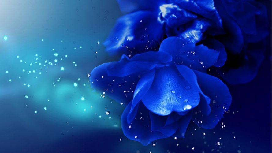 Brilliant blue Enchantress wallpaper