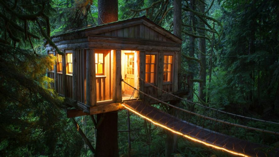 American unique hotel tree house cable bridge forest wallpaper