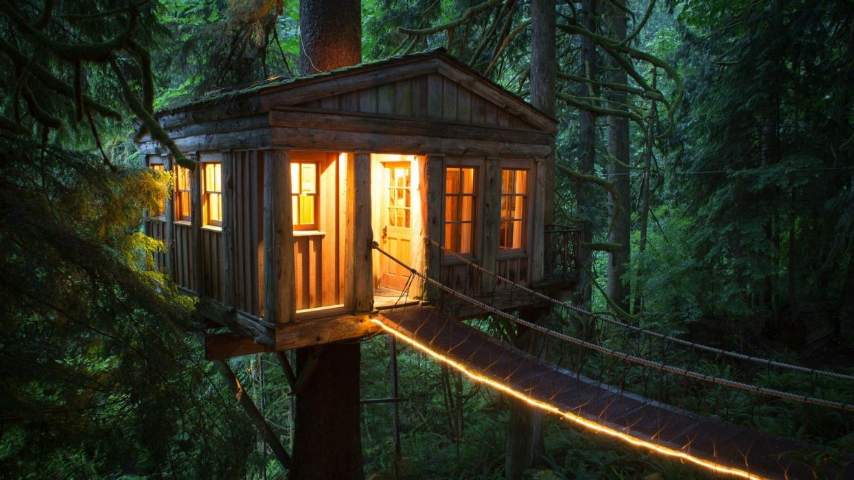 American unique hotel tree house cable bridge forest  wallpaper