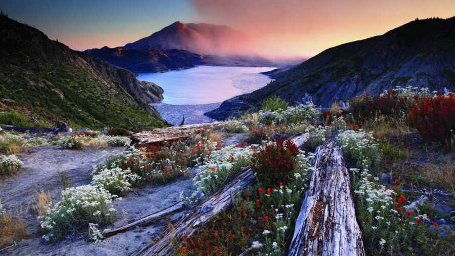 Tranquil lake landscape nature beauty peacefull flowers wallpaper
