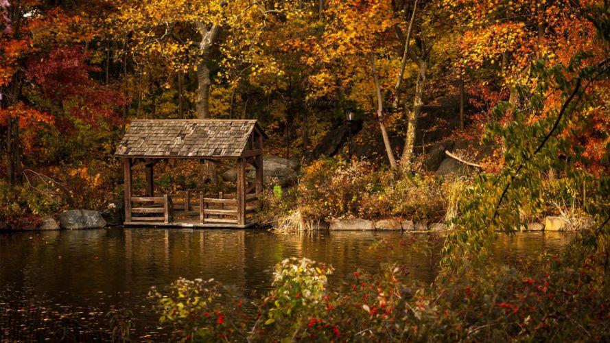 nature beauty landscape autumn tree river wallpaper
