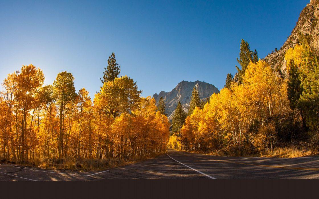 landscape natural Beautiful mountain scenery autumn tree wallpaper