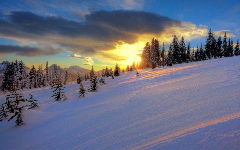 Beautiful natural winter snow wallpaper