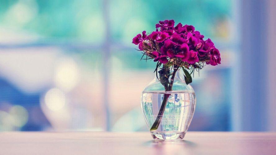Bottle of rose purple romantic love wallpaper