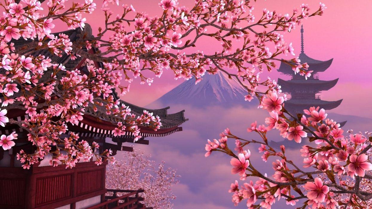 Beautiful Pink Cherry Tree Mount Fuji Wallpaper