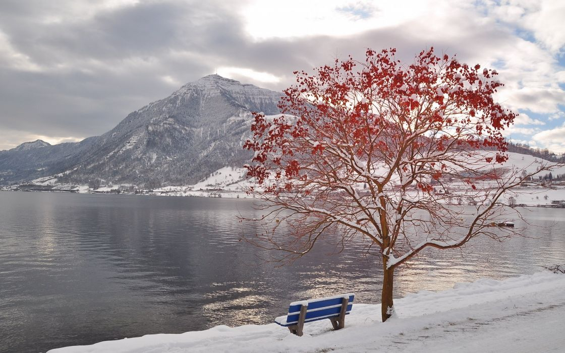 tree bench leaves autumn october freezing mountain lake wallpaper