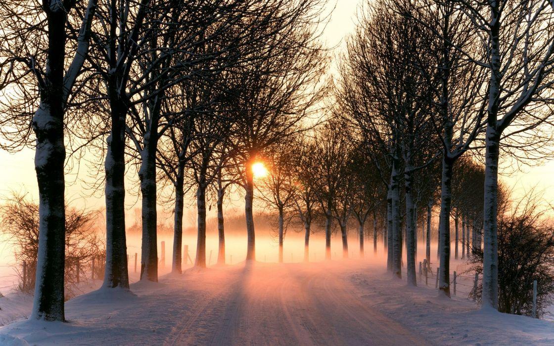 road snow winter wallpaper