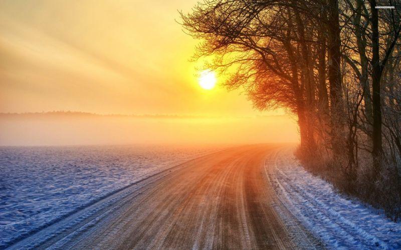 Sun shining snowy road winter mist tree forest wallpaper