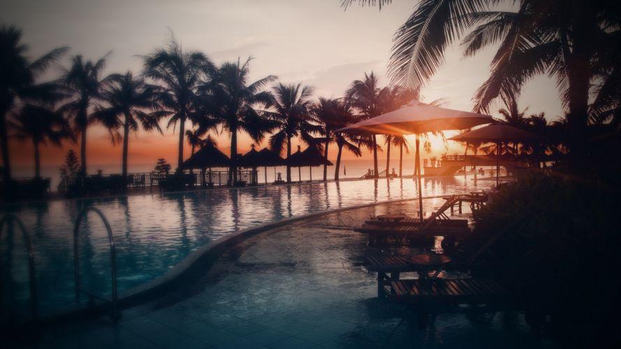 nature swimming pool sunset palm trees sunlight wallpaper