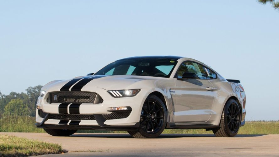2015 50th anniversary Gray cars ford gt350 shelby wallpaper
