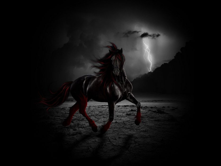 Red And Black Horse Wallpaper