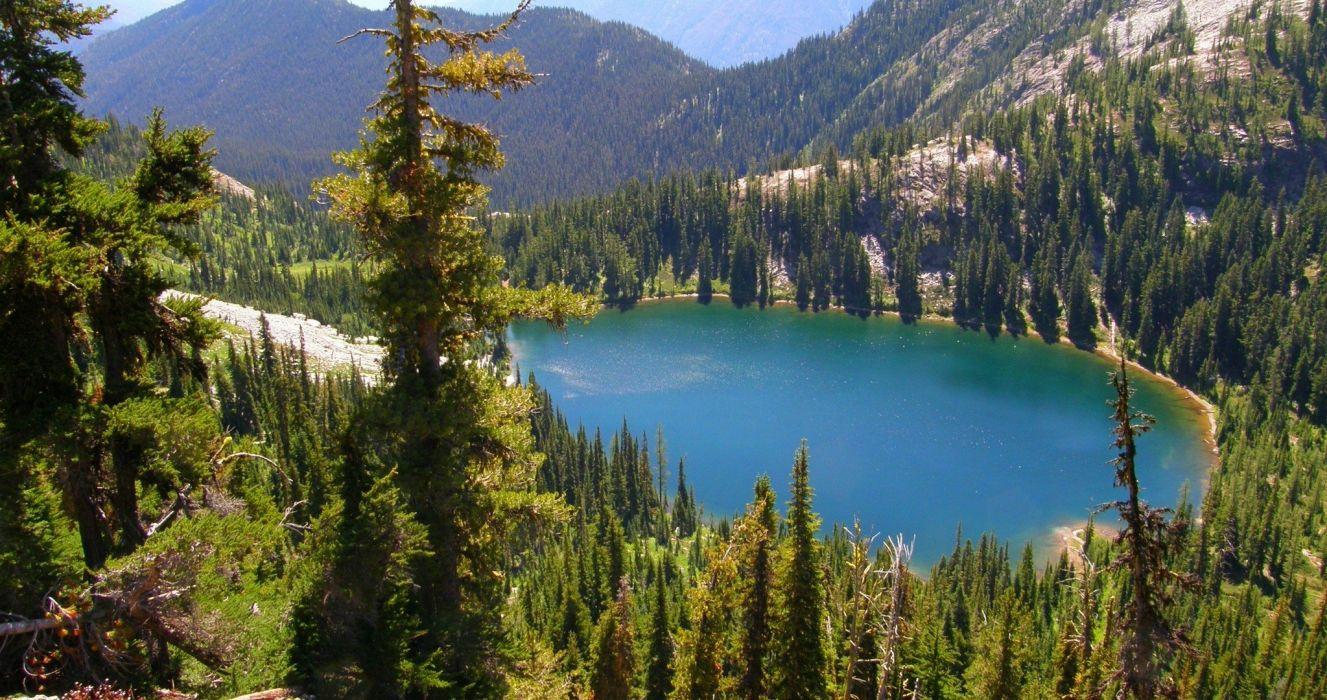 naturaleza bosque lago wallpaper