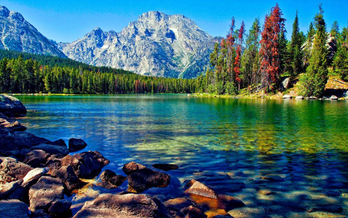 lago naturaleza bosque montay wallpaper