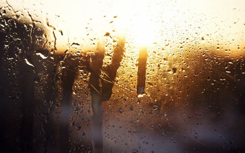 rain water on glass sunlight wallpaper
