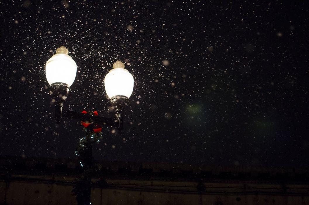 bonnet-fireflies-glowworms-1123 wallpaper